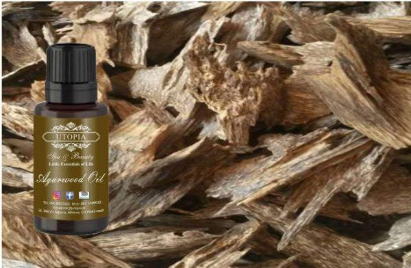 Agarwood Oil