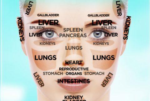 Facial Mapping Skin Analysis
